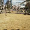 中野セントラルパーク(四季の森公園)