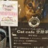 猫カフェ「猫喫茶 空陸家plus」吉祥寺店